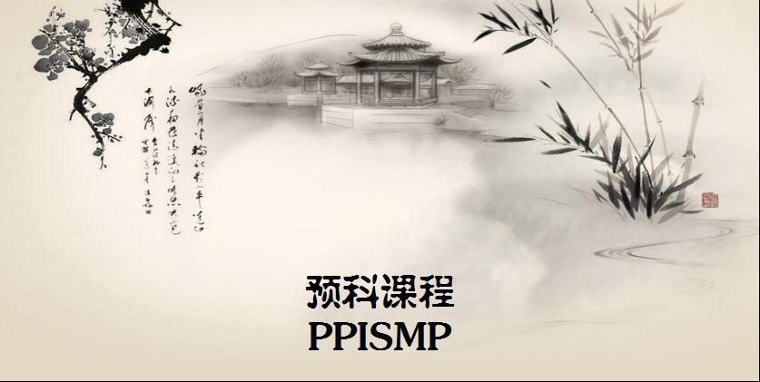 PPISMP 2020
